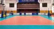 排球馆木地板
